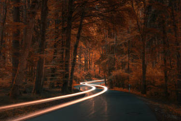 Autumn Road by TheChosenPesssimist