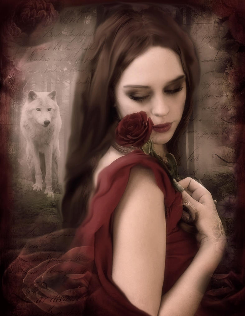 Red rose, white wolf by Bohemiart