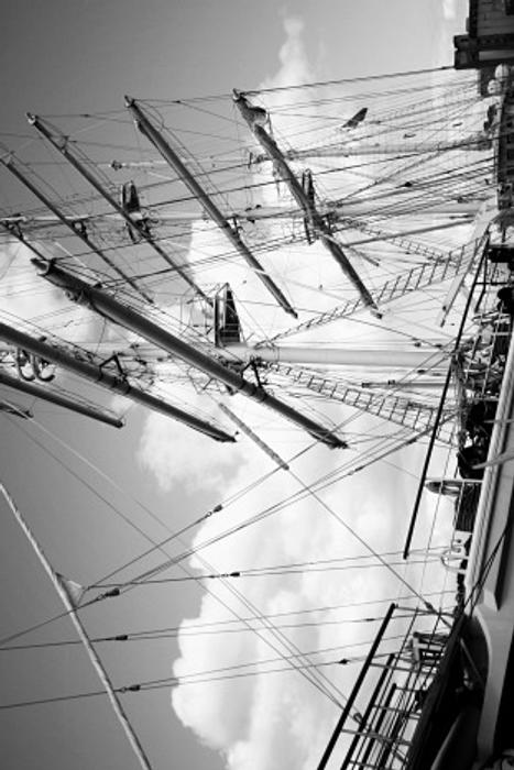 Tenacious Tall Ship by donncha