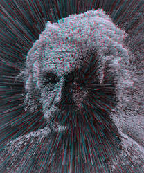 Albert (stereoscopic) by deignis