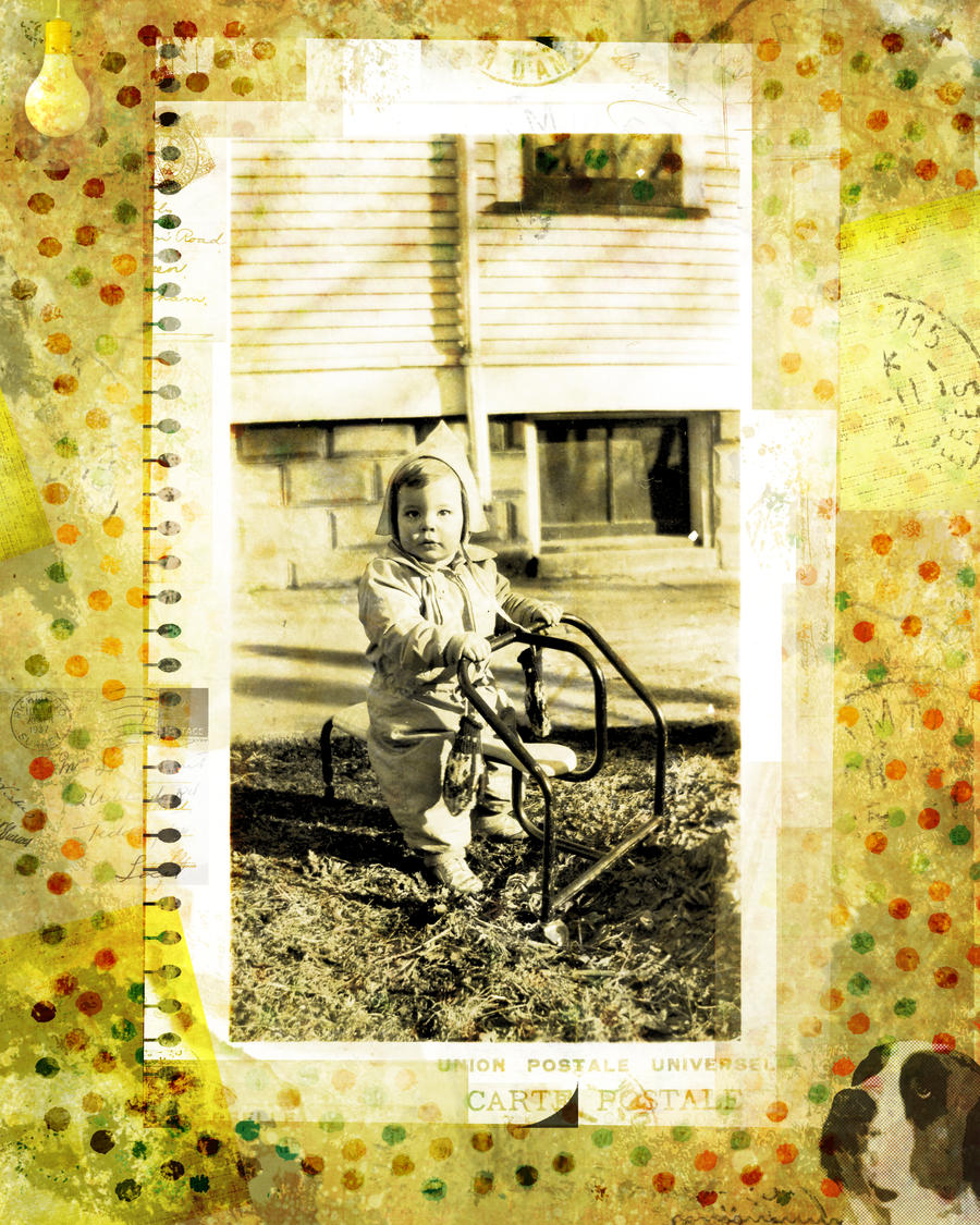a childhood memoir of the forest hill Forest hill, md child care centers child development centers in forest hill vary in size as well as in scope while some offer progressive curriculums and the latest advancements for.