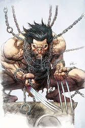 Leinil Yu Wolverine Color 4fun By Spicercolor D2g5
