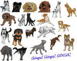 Ginga, Ginga, GINGA