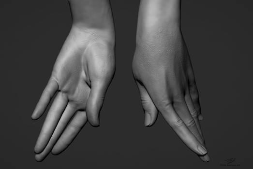 Hand Sculpts 01