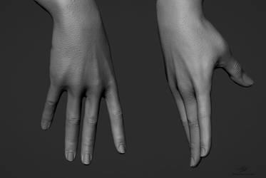 Hand Sculpts 02