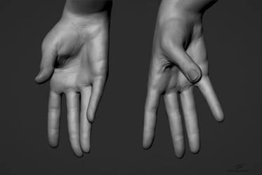Hand Sculpts 03
