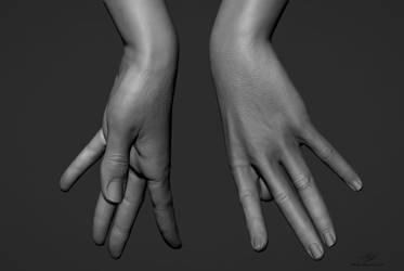 Hand Sculpts 04