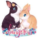 dangerous bunnies