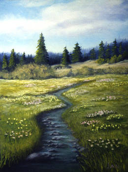 Meadow Stream