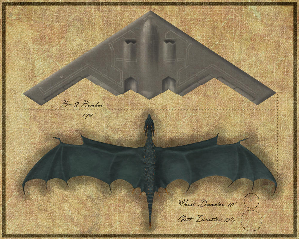 Wyvern Size Comparison - Overhead View by MostlyTeeth