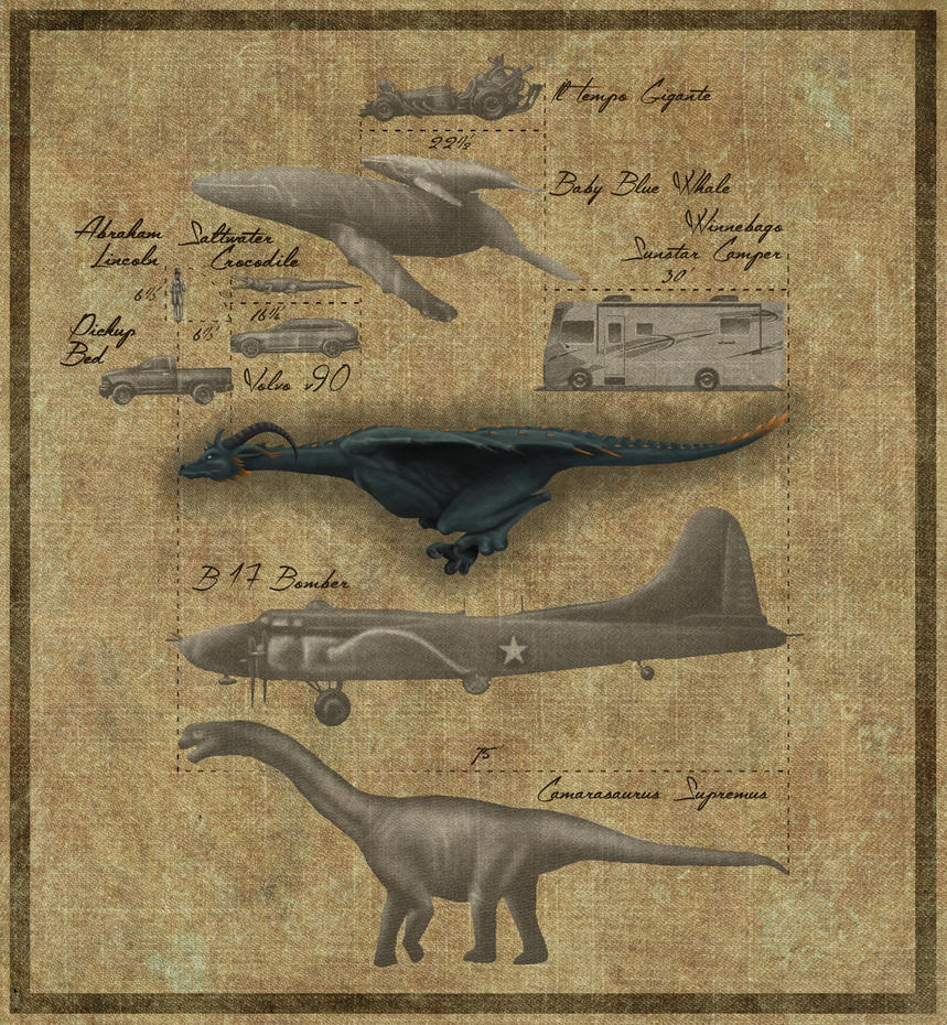 Wyvern Size Comparison - Side View by MostlyTeeth