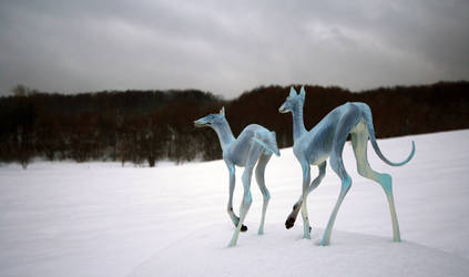 Hounds of winter