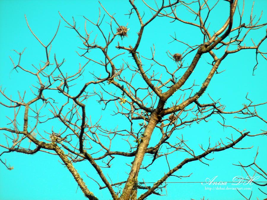 Autumn by dehai