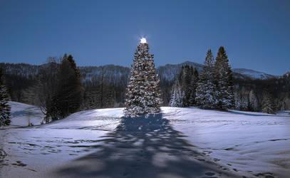 Christmas tree by MarvinDiehl