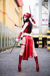 Elektra Cosplay by Hekady