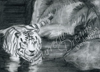 White Tiger by ResurrectionDreams