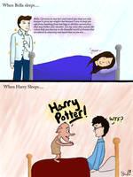 sleep Twilight v. Harry Potter by ttlywinket