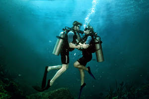 Lovers Divers