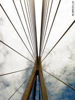 the BRIDGE by wilminetto