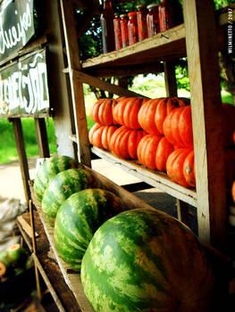 Watermelon, pumpkin and road