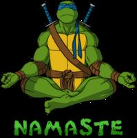 Namaste Leonardo
