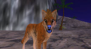 Feralheart Tongue Coloration AddOn (For Canines) by Unnuk