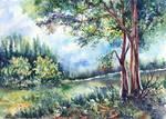 Landscape and wildlife.