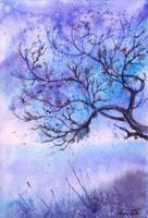 Blue serenity by AnnaArmona