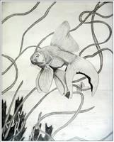 Exquisite Fish by babygurl83