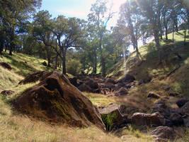 River of Rocks by babygurl83