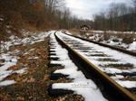Tracks of Snow