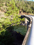 Bridge Over Content Waters