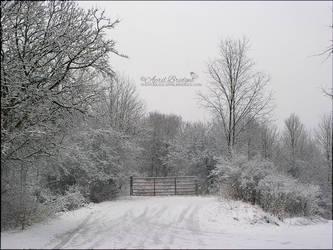 Snow Scene by babygurl83