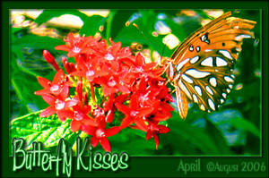 Butterfly Kisses by babygurl83