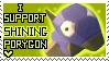 I Support Shining Porygon.