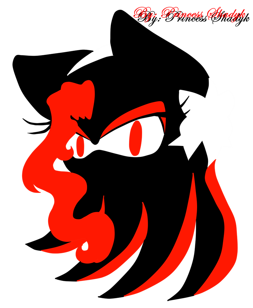 New Logo Shadyk the Hedgehog by PrincessShadyk