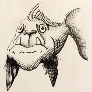 Pugfish