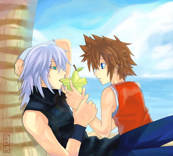 Kingdom Hearts Is Gay 4