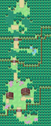 Starter Town, Route 1 by BoOmxBiG