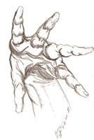Training - Hand 2 by LucasCoppio
