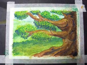 Segunda aquarela em papel Montval