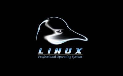 Linux OS by LiquidSky64