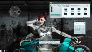 Linux Mint 14 - Robot Biker