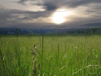 Sunrise Field by rachellafranchistock