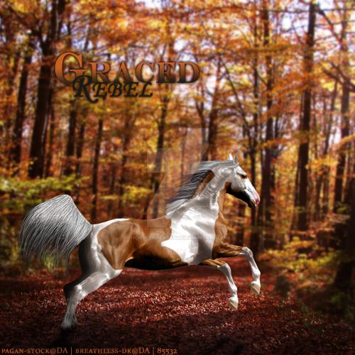 HEE Commission: Graced Rebel by horsesrock12345