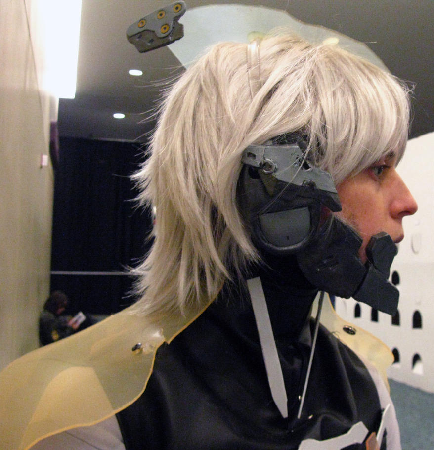 Raiden Profile by trinadi