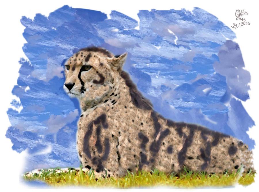 TieS aka Cheetah by coyoteOdin