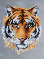 Tiger Face by Devi-Tiger