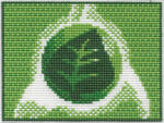 Grass Energy Card