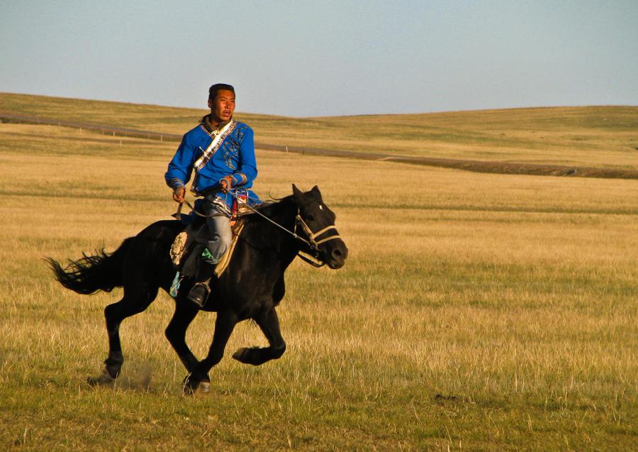 Mongolian Horse Rider by kayellaneza